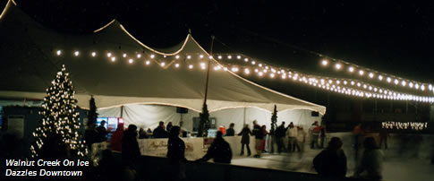 icerinkevents007013.jpg