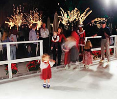 icerinkevents009072.jpg